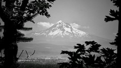 Old Volcano (Oh Kaye) Tags: odc 100possibilities mthood fromrockybutte portland oregon