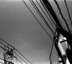 (far and high) (Dinasty_Oomae) Tags: voigtlaender vitomatic vitomatic2a   2a kanagawa yokohama     blackandwhite monochrome   outdoor utilitypole utilitywire